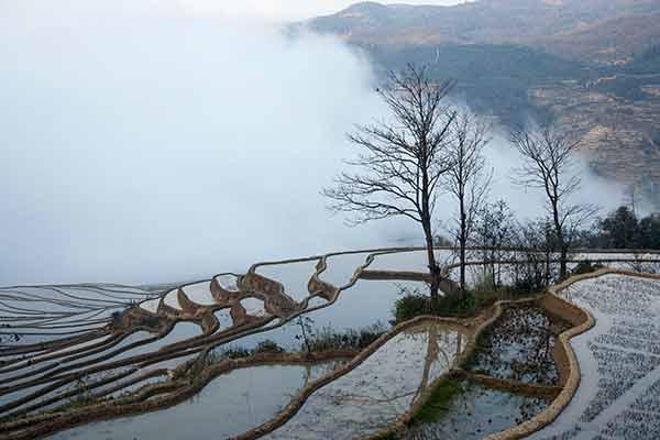 Le climat lors d'un voyage au Vietnam en novembre