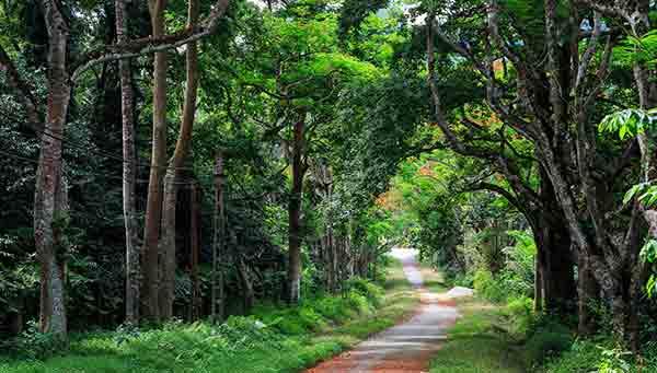 Destinations idéales près de Hanoi lors de votre voyage organisé au Vietnam