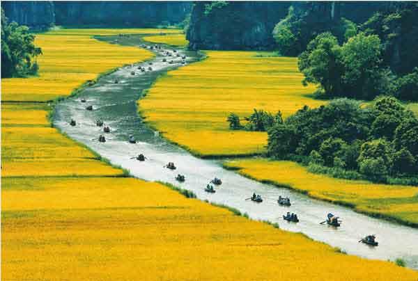 Que faire lors d'un circuit Vietnam 3 semaines ?