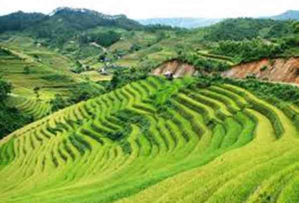 Voyage au Vietnam du nord : Mu Cang Chai durant la « saison du riz »