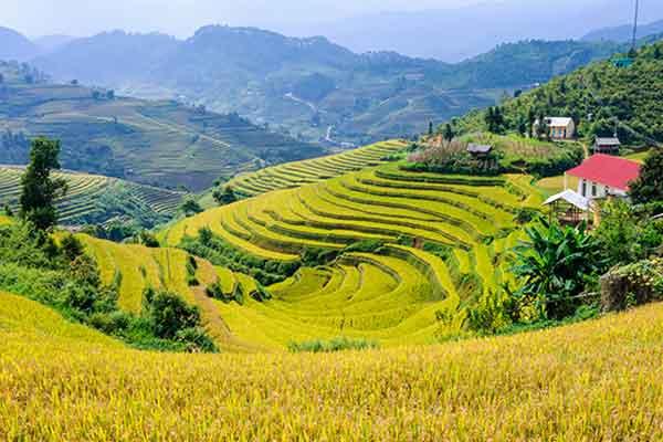 Nos tops destinations pour votre circuit trekking Vietnam
