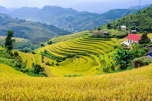 Bon plan : circuit Vietnam 15 jours pas cher